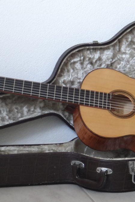 DSC04390 450x675 - Erwin von Grüner Doppelresonanz Meistergitarre 1982
