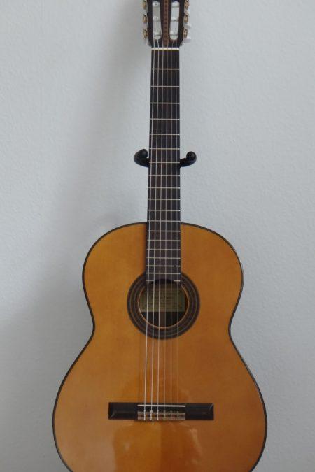 DSC04494 450x675 - Frederico Garcia