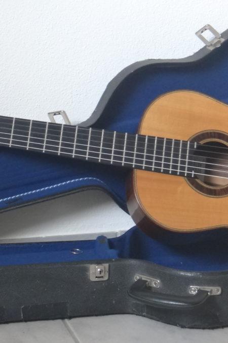 DSC04619 450x675 - Heiner Dreizehnter Meistergitarre