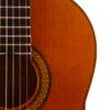 IMG 3190 100x100 - Miguel Malo 2005 Cedar/Maple