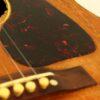 IMG 0009 1 100x100 - Gibson J-50 1950