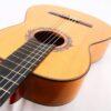 Jeronimo Perez Flamenco strings