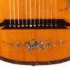 IMG 1497 100x100 - Albertus Blanchi 1900 Harp Guitar