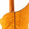 IMG 1504 100x100 - Albertus Blanchi 1900 Harp Guitar