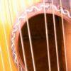 IMG 1507 100x100 - Albertus Blanchi 1900 Harp Guitar