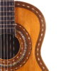 IMG 1819 100x100 - Francisco Pau classical guitar ~1870