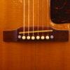 IMG 2354 100x100 - Gibson J-50 1955