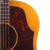 IMG 2355 100x100 - Gibson J-50 1955