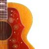 IMG 2630 100x100 - Gibson J-200 1965