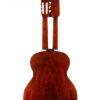 IMG 3090 100x100 - Horst Dietrich Wiener Kontragitarre (Schrammelgitarre)