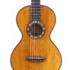 IMG 3438 100x100 - French Romantic Guitar ~ 1850