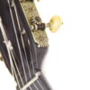 IMG 3442 100x100 - French Romantic Guitar ~ 1850