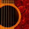 IMG 0042 100x100 - Gibson J-50 1955