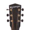 IMG 3653 100x100 - Kalamazoo (Gibson) KG-11 1934