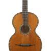 IMG 3764 100x100 - Stauffer inspired guitar Vienna ~1860