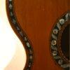 IMG 3767 100x100 - Stauffer inspired guitar Vienna ~1860