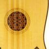 IMG 3822 4 100x100 - Renaissancegitarre ~1560
