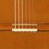 IMG 3980 1 100x100 - Nicolaus Wollf 2000
