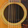 IMG 0004 7 100x100 - Gibson J-50 1963
