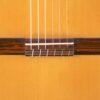 IMG 0003 100x100 - Friedrich Kroeber classical guitar