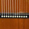 IMG 0003 4 100x100 - Vienna style Harp Guitar ~1900