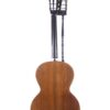 IMG 0007 4 100x100 - Vienna style Harp Guitar ~1900