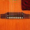 IMG 4215 1 100x100 - Gibson J-50 1968