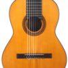 IMG 0001 100x100 - Abel Garcia 8-string