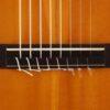 IMG 0004 100x100 - Abel Garcia 8-string
